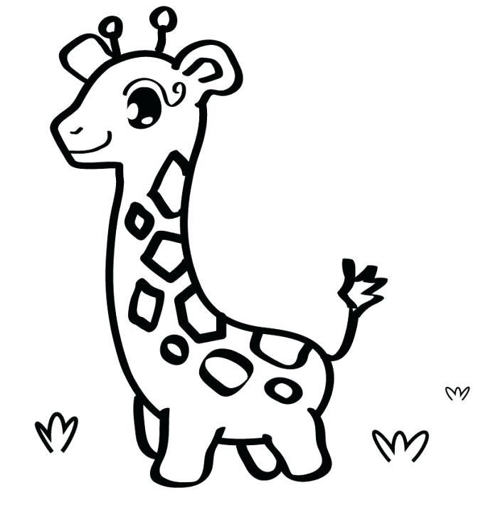700x723 Easy Giraffe Drawing
