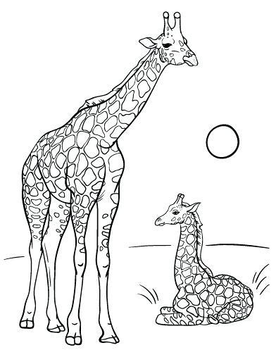 392x507 Giraffe Coloring Page
