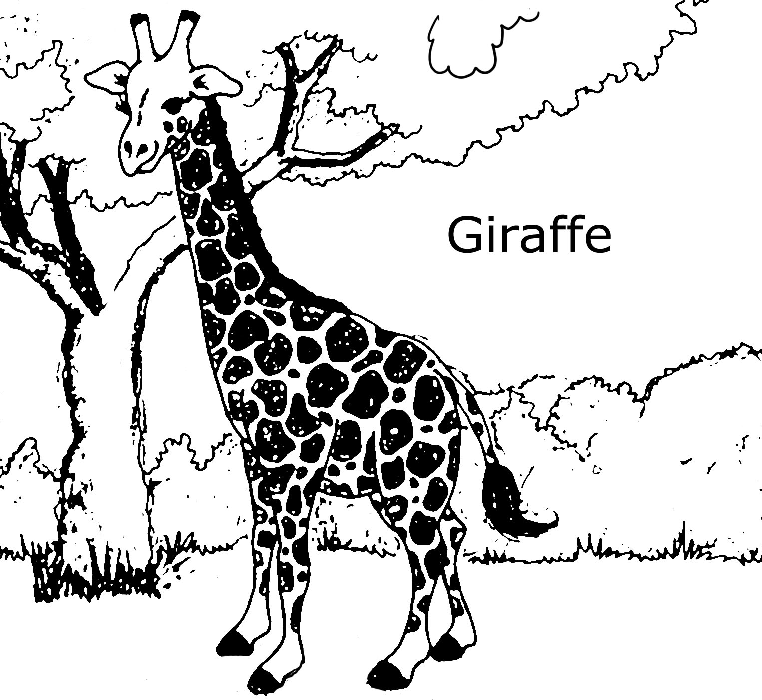 1526x1403 Giraffe Coloring Pages