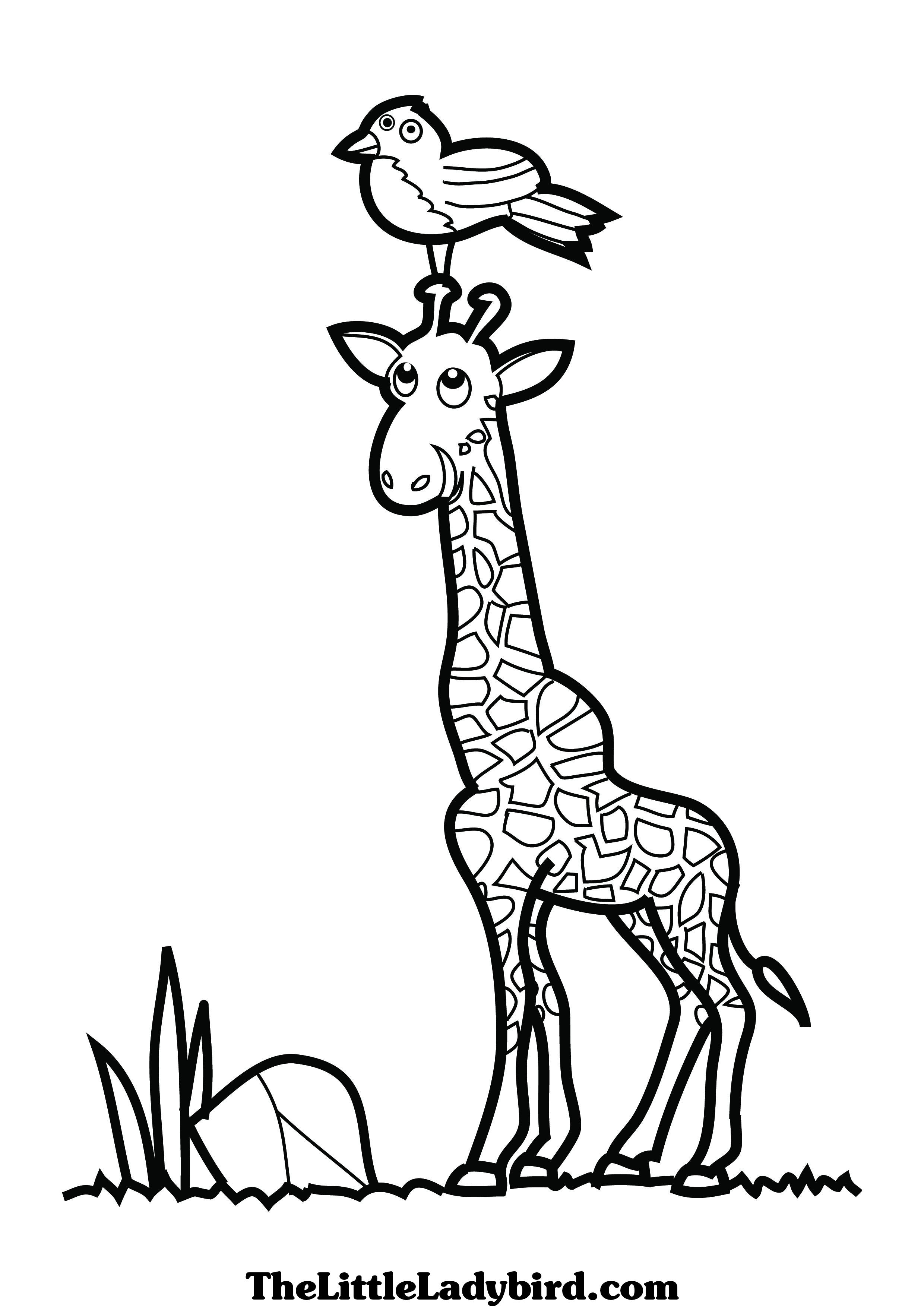 2480x3508 Giraffe Head Coloring Pages