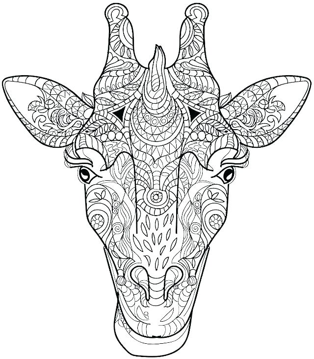 640x731 Giraffes Coloring Pages Giraffe Coloring Page Giraffe Coloring