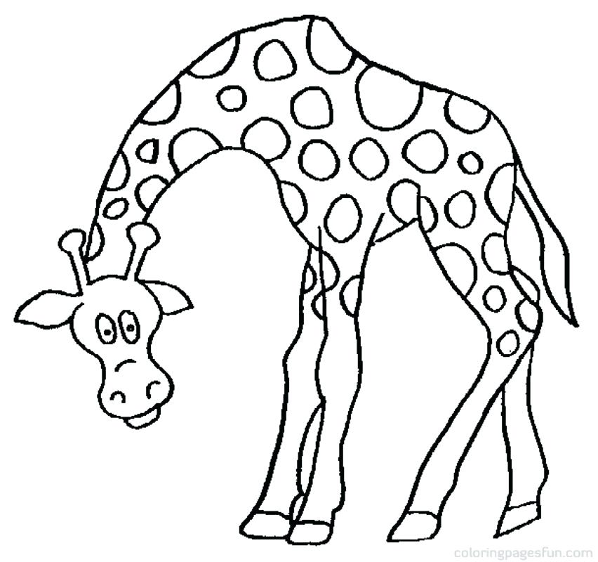 852x800 Giraffes Coloring Pages Giraffe Head Coloring Picture Giraffe