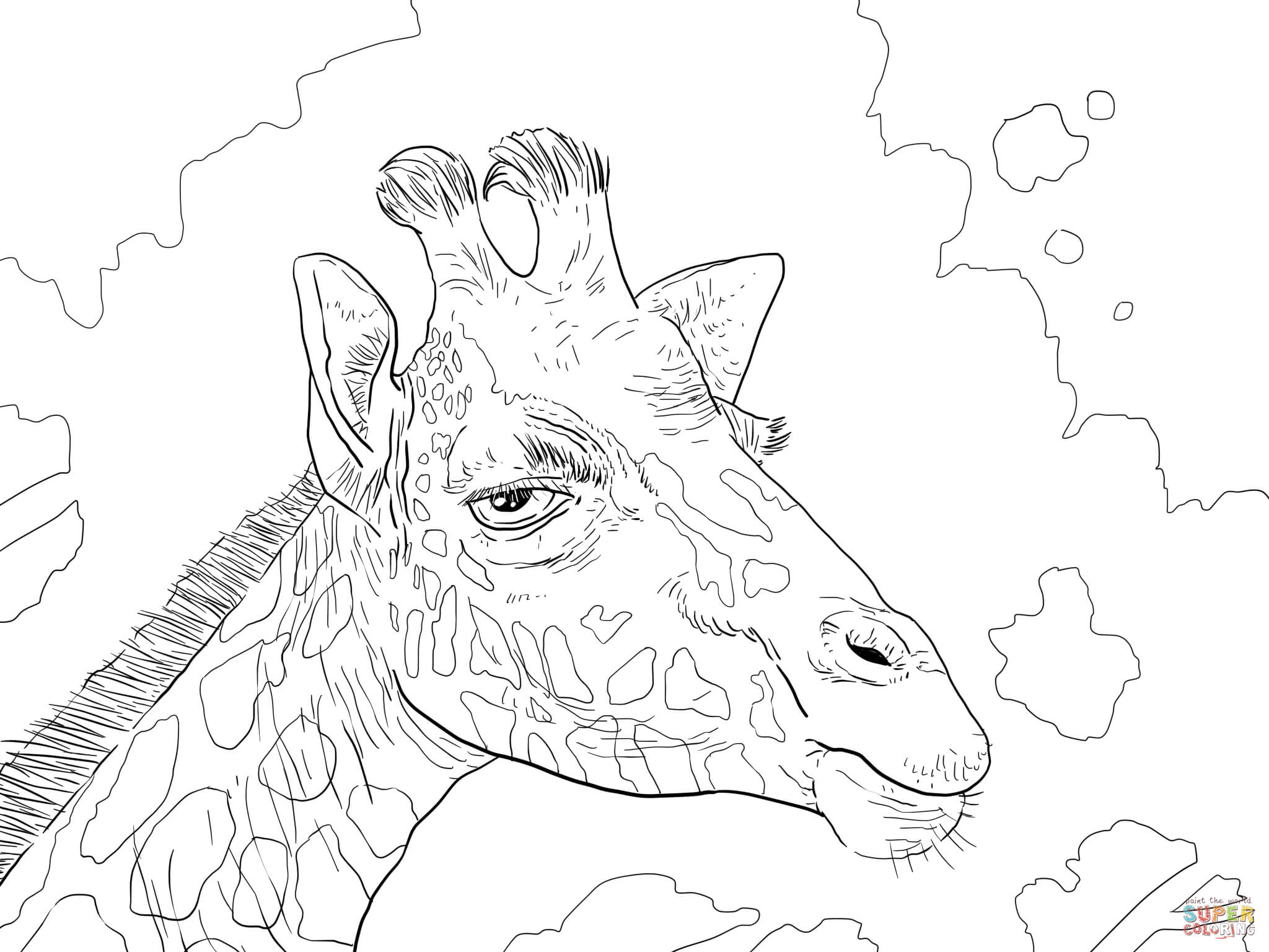 2048x1536 Rothschild Giraffe Head Coloring Page At Giraffe Coloring Pages