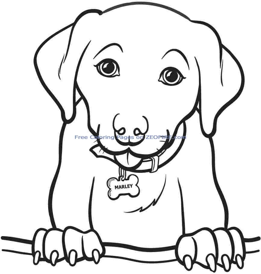 867x910 Coloring Pages For Teens Printable