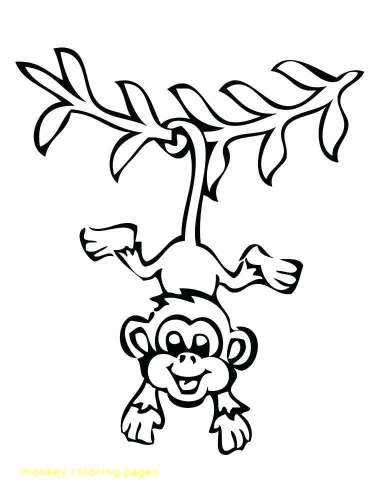 750x1000 Monkeys Coloring Pages Click To See Printable Version Of Or Spider
