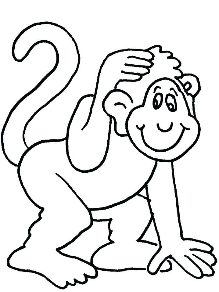 718x957 Monkey Color Page