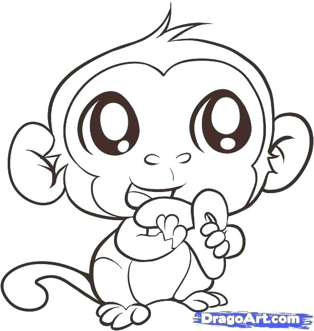 614x648 Baby Monkey Coloring Pages Monkey Coloring Pictures Baby Monkey