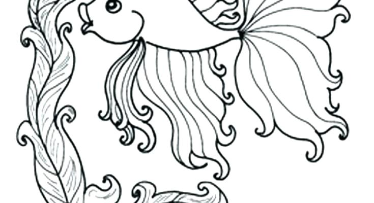 735x400 Ocean Life Coloring Pages