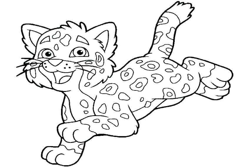 850x567 Go Diego Go Pictures To Color Go Go Coloring Pages Go Go Coloring