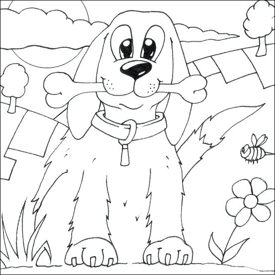 553x553 Go Dog Go Coloring Pages Cats And Dogs Coloring Pages Images Adult