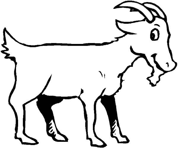 600x502 Goat Is Smiling Coloring Pages Color Luna