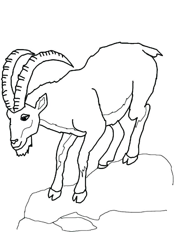 600x799 Mountain Coloring Page Mountain Coloring Pages Print Pics Goat