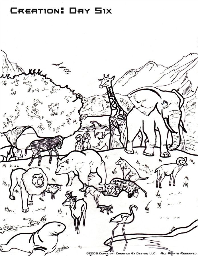 695x900 Coloring Page God Created Animals Pages Creation Go Digital