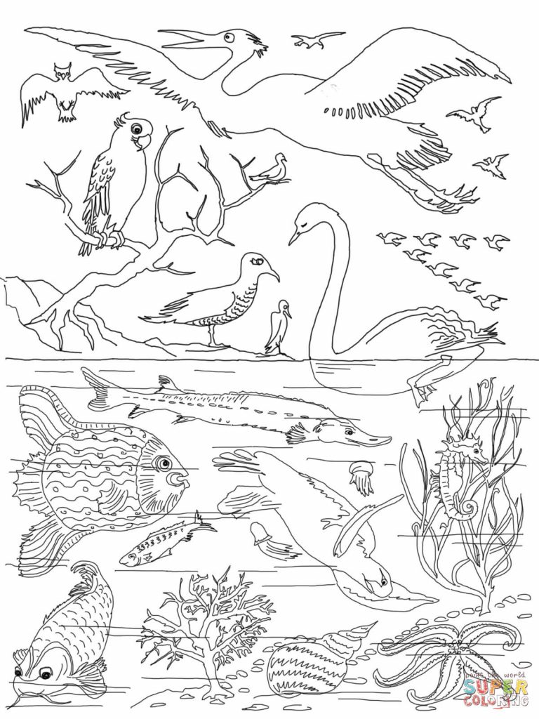 768x1024 Coloring Page God Created Animals Copy Unparalleled Creation