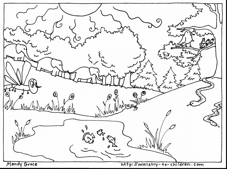 768x575 Coloring Page God Created Animals New Nobby Design Creation