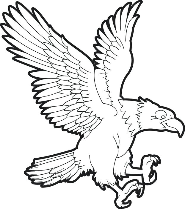 622x700 Eagle Colouring In Bald Eagle Coloring Page Golden Eagle Pictures