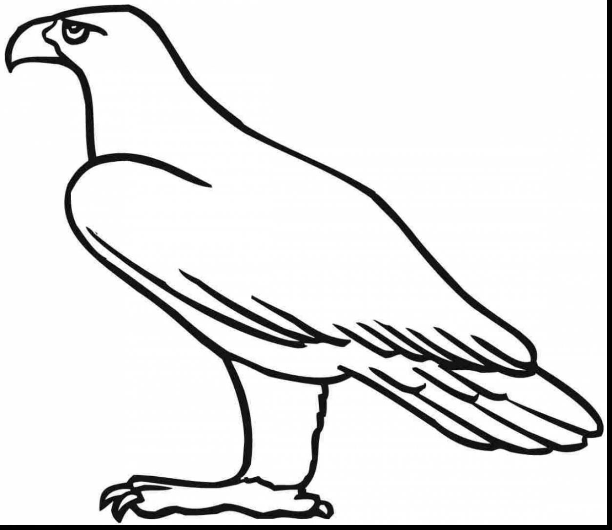 1254x1085 Golden Eagle Coloring Pages Eagle Coloring Pages Eagle