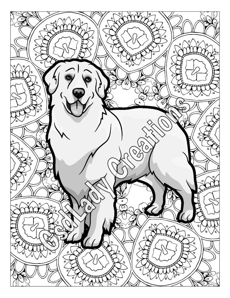 740x958 Dog Art, Greyscale Coloring Page, Golden Retriever, Dog Coloring