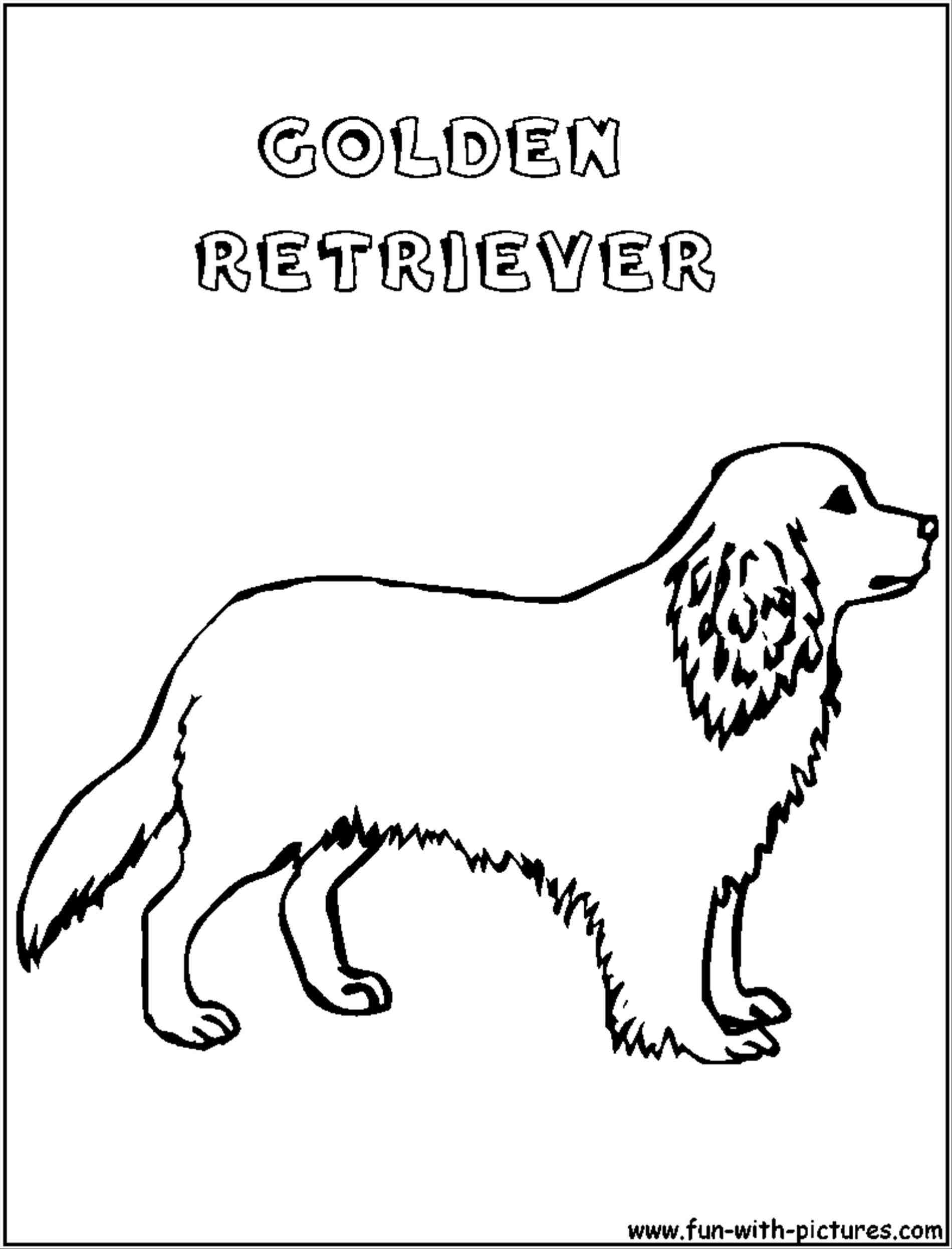 1900x2493 Golden Retriever Puppy Outline Animalsee Club