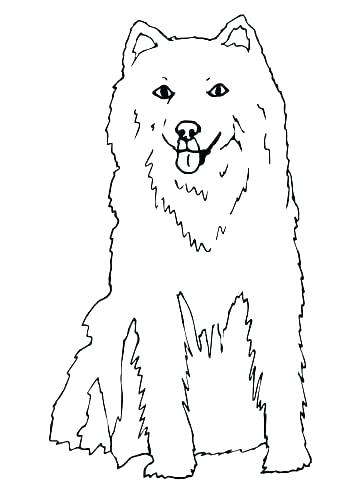 360x480 Husky Puppy Coloring Pages Golden Retriever Puppy Coloring Pages