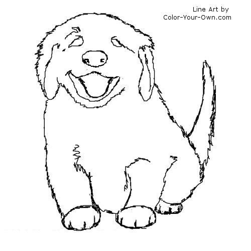 500x500 Fuzzy Puppy Line Art Dog Patterns Dog, Golden