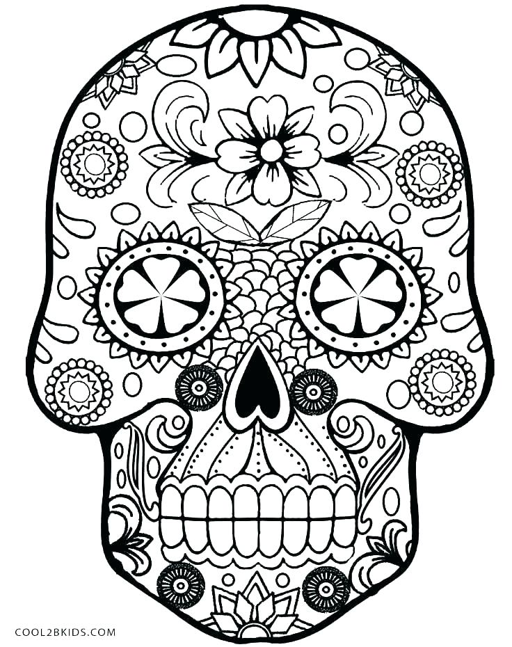736x930 Golden State Warriors Printable Coloring Pages Skull