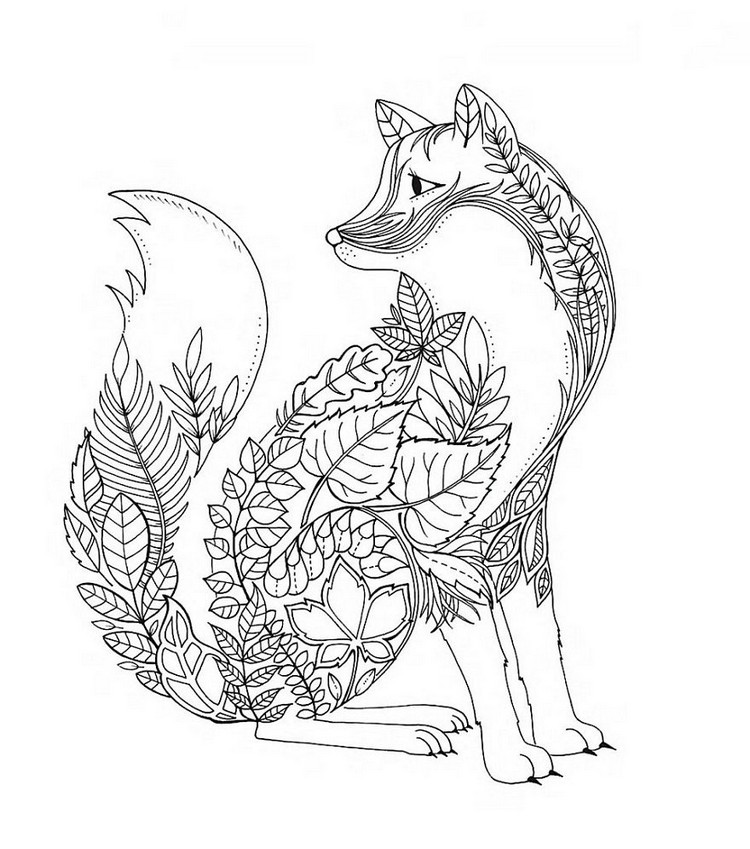 750x849 Fox Coloring Pages For Adults