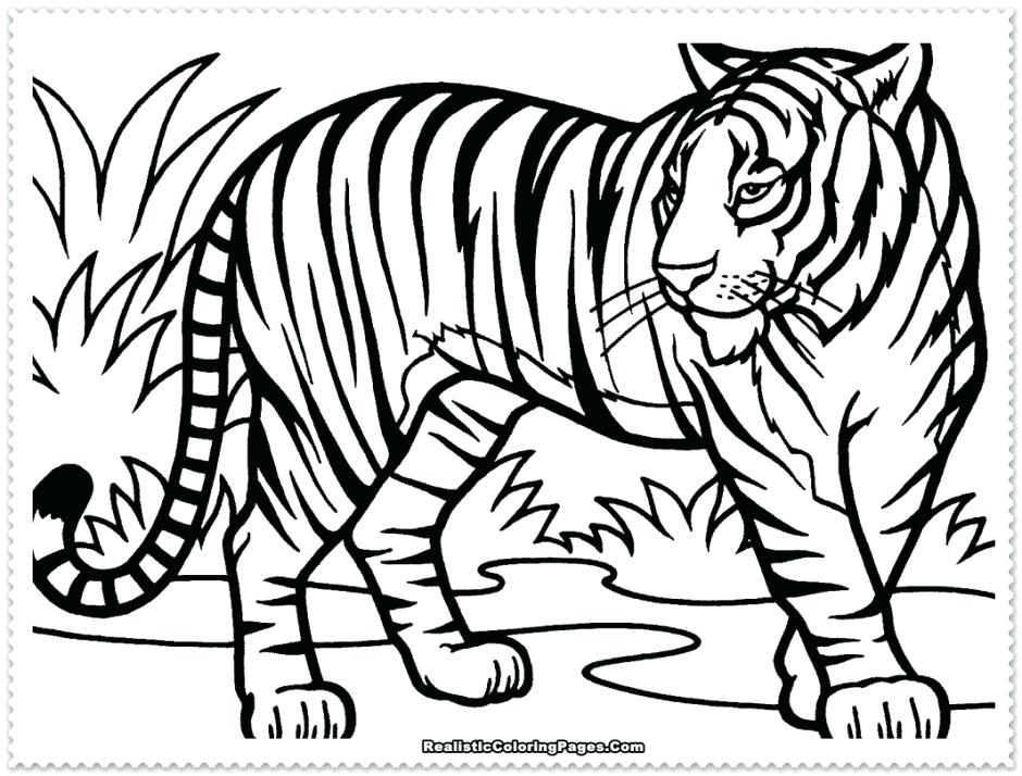 940x714 Coloring Pages Com Coloring Pages For Girls Google Search Coloring