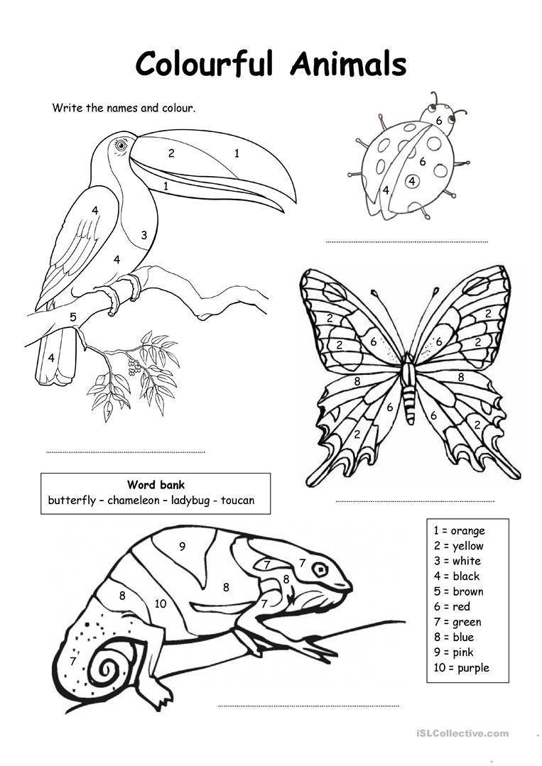 763x1079 Free Esl Coloring Worksheets