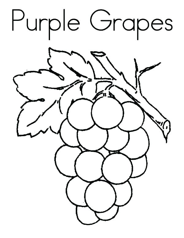 600x776 Grape Coloring Page Grapes Coloring Page Purple Grapes Coloring