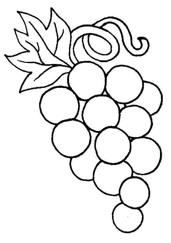 560x794 Grapes Coloring Page