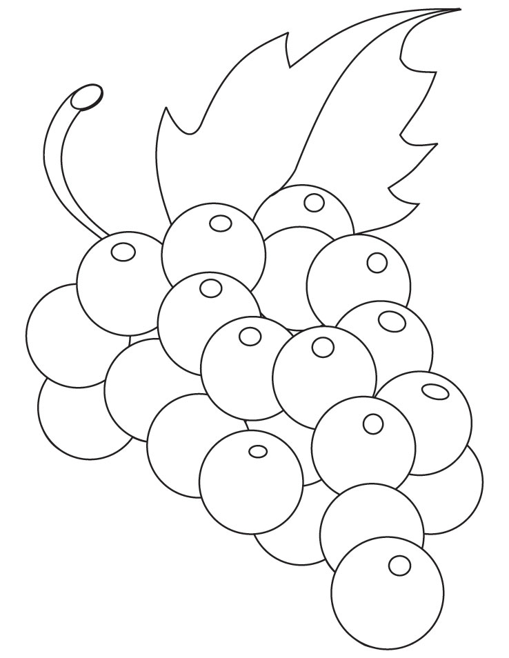 738x954 Grapevine Coloring Sheet Grapes Pages Green
