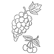 230x230 Top Free Printable Lovely Grapes Coloring Pages Online