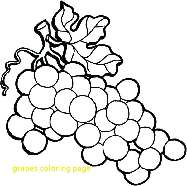 600x597 Grapes Coloring Page With Grapes Coloring Page Wine Grapes