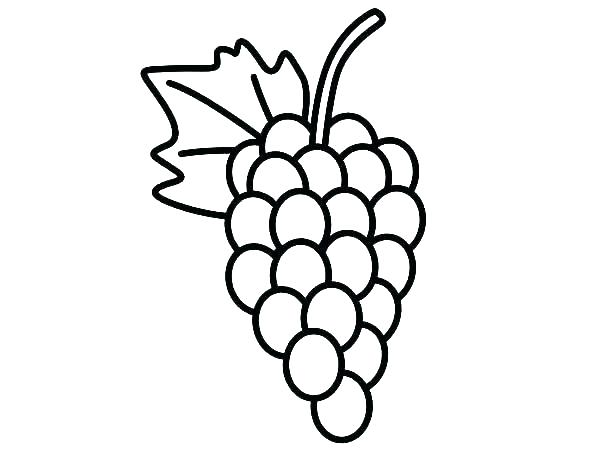 600x450 Grapes Coloring Pages Grape Coloring Page Grapes Coloring Page