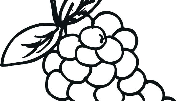 585x329 Grapes Coloring Pages Grapes Coloring Page Pages Grape Fox