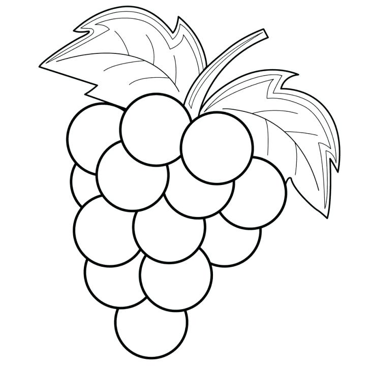 728x728 Grapes Coloring Pages Grapes Coloring Page With Wallpapers Pages