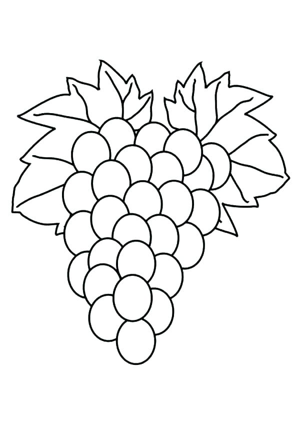 600x849 Grapes Coloring Pages Purple Coloring Pages Grapes Coloring Pages