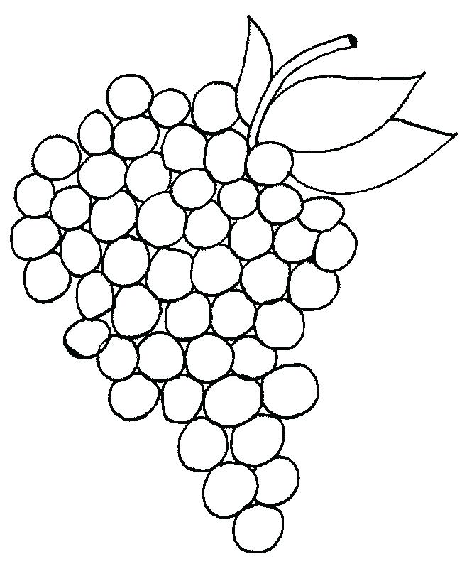 651x794 Grapes Coloring Pages We Hope You Can Find What You Need Here We