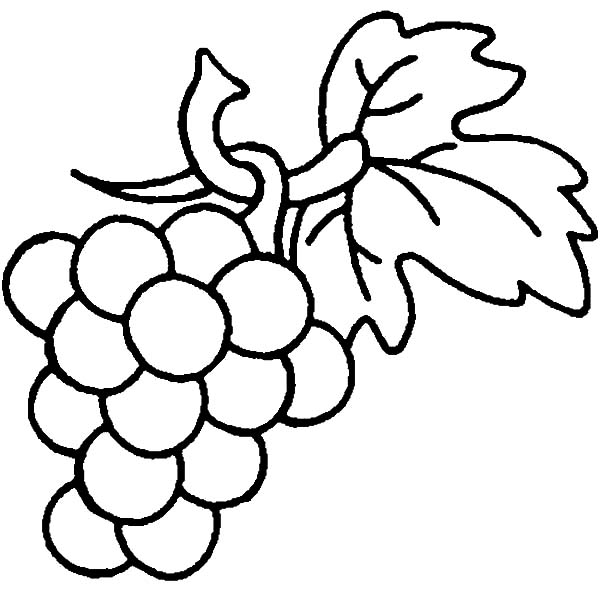 600x600 Grapes Are Berry Family Coloring Pages Color Luna