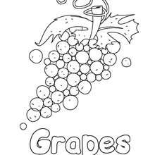 220x220 Grapes Coloring Pages