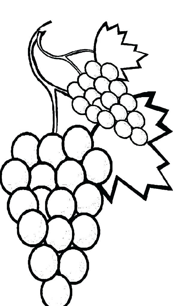 600x1021 Vine Coloring Pages Page Image Images Watermelon Coloring Pages