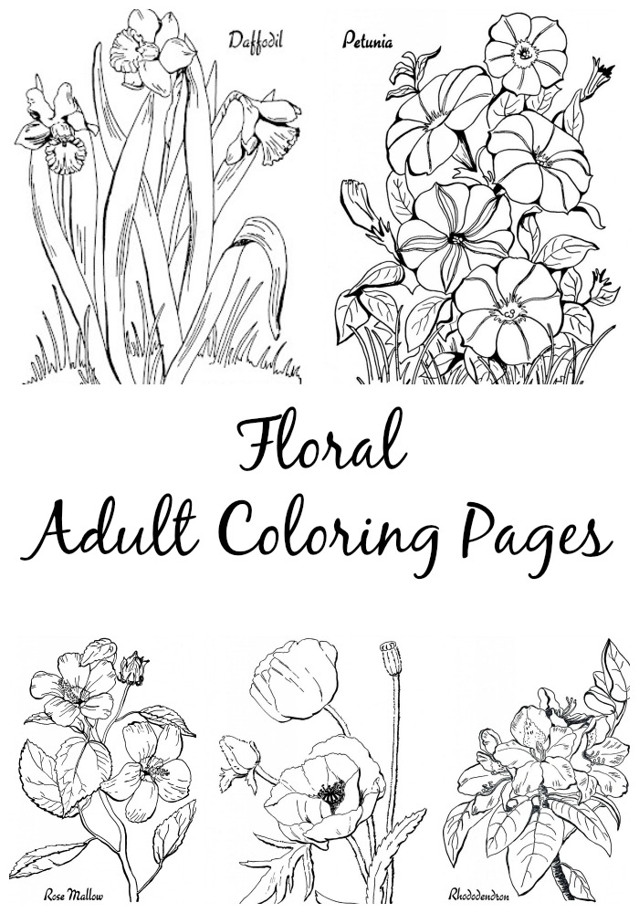 700x1000 Floral Adult Coloring Pages