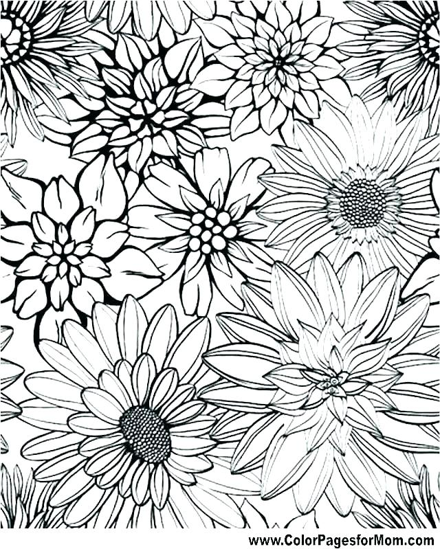 640x799 Graphic Coloring Pages Therapeutic Coloring Pages Flower Coloring