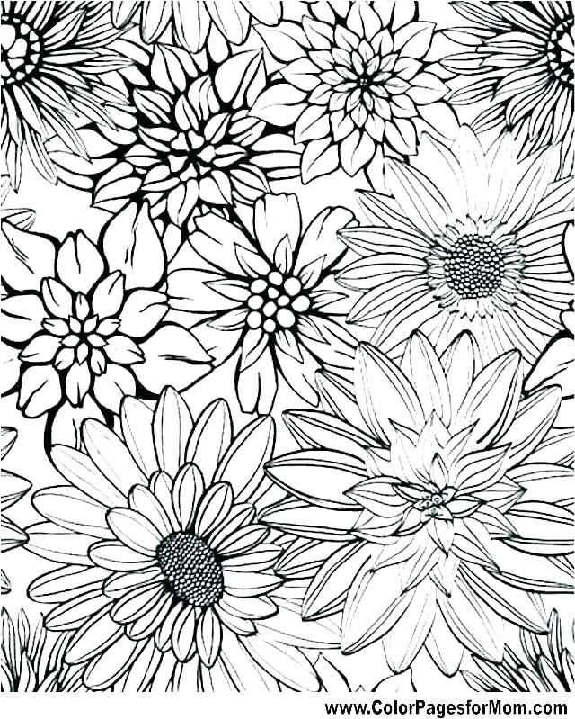 640x799 Graphic Coloring Pages