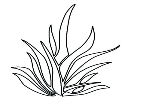 476x333 Grass Coloring Page Grass Coloring Pages Tree Coloring Pages Grass