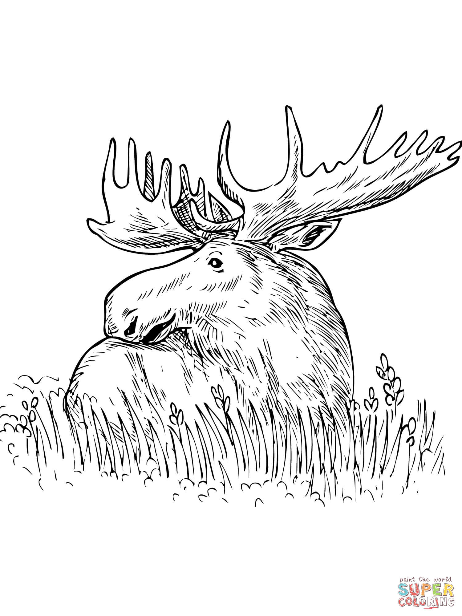 1500x2000 Grass Coloring Page
