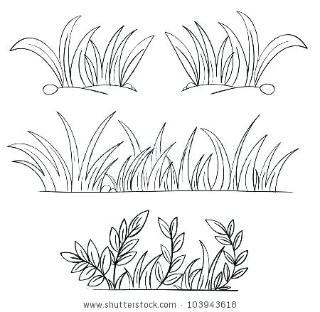 450x439 Grass Coloring Page Grass For Coloring Free Grass Coloring Pages