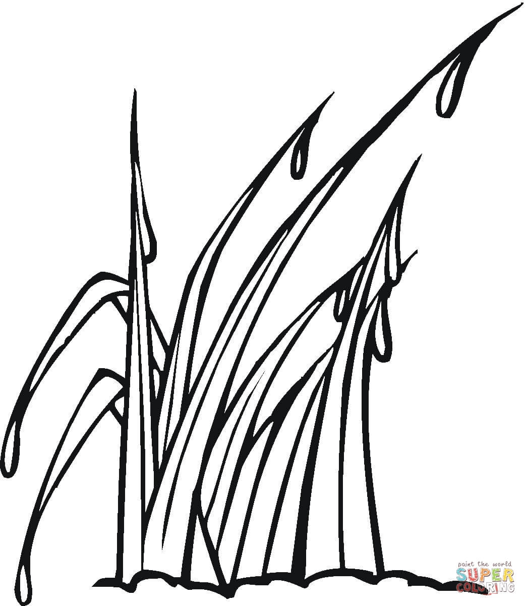 1043x1200 Grass Coloring Pages Downloads Page On Gallery Ideas