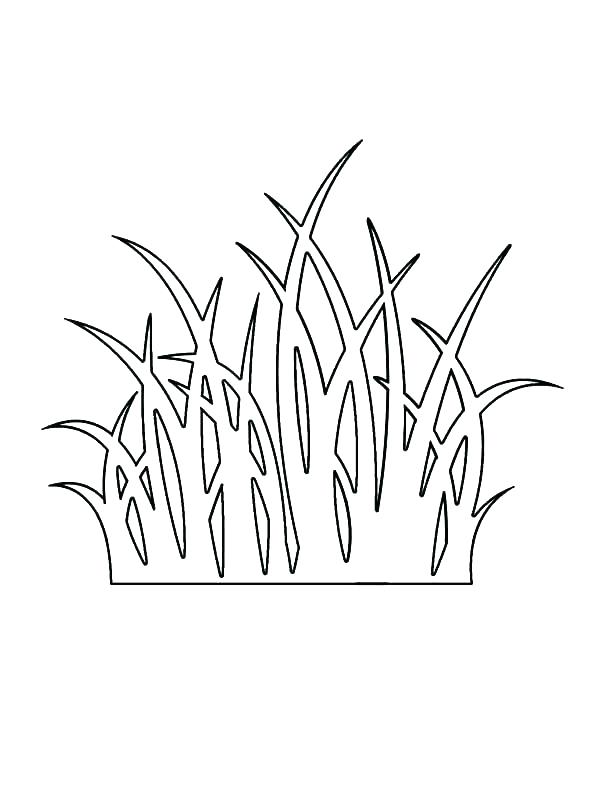 600x800 Grass Coloring Pages Flower Pinched Between Grass Coloring Pages